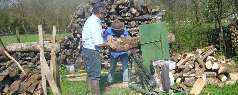 Entretien des arbres et coupe du bois