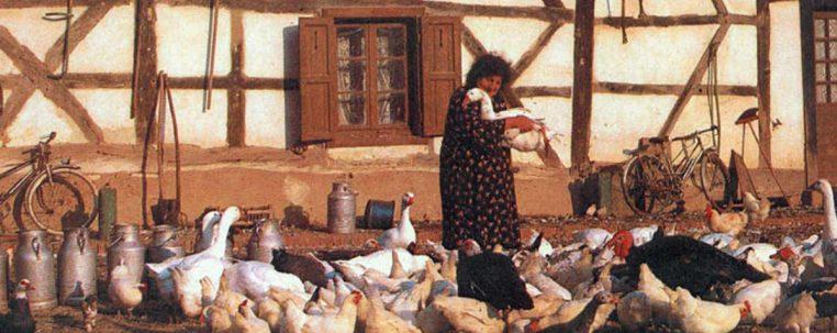 Maria et ses oies